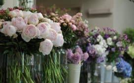 أسعار خيالية لأزهار نادرة