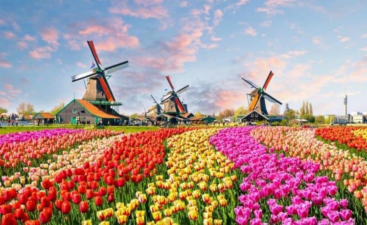 أجمل المدن بهولندا