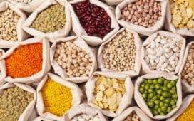 أهمية الحبوب في التغذية