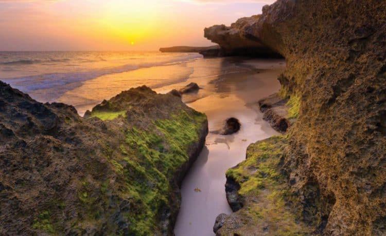 جزيرة فرسان وجهة سياحية
